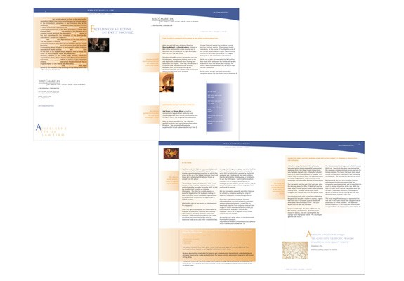 Bird Marella law firm Brochure